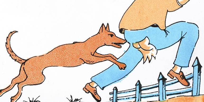 10 самых распространенных проблем в поведении собак