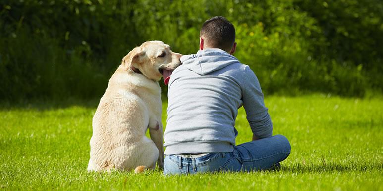 Пять причин поговорить с собакой
