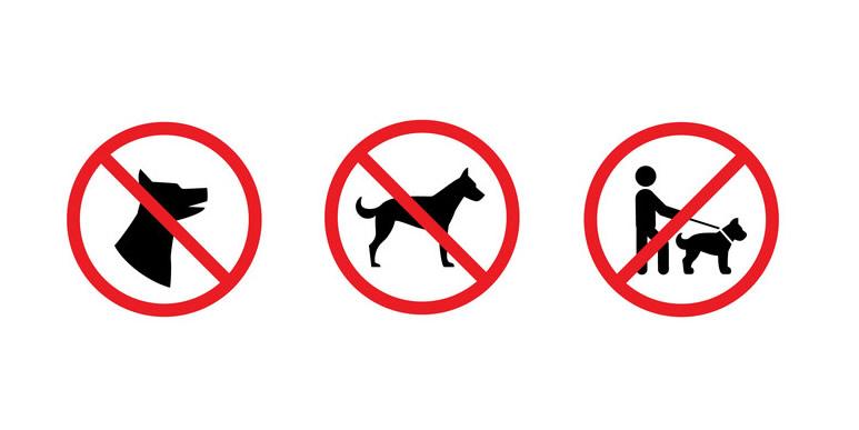 Нападение собаки на ребенка в Кемерово. Снова истерика?