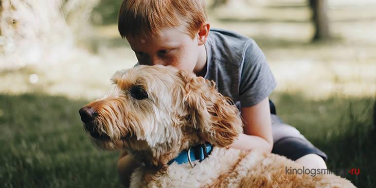 Тот, кто называет собаку «ребенком», нормальный человек или все же не очень?