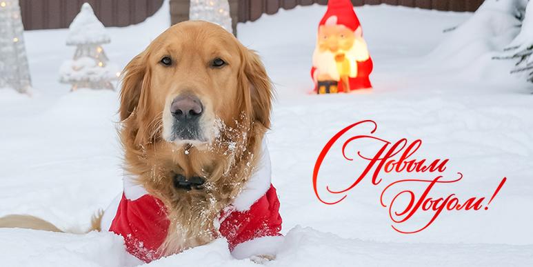 Желаю вам всего самого доброго в наступающем 2013 году!
