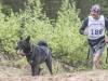 Партнер по марафону: какую собаку выбрать для совместных пробежек?
