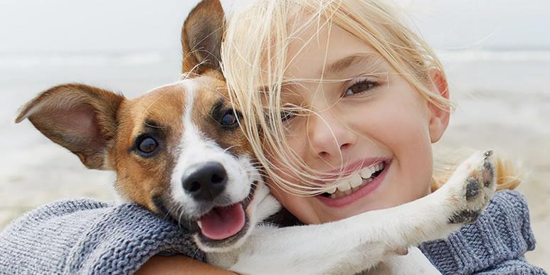 Тайная суперсила: почему именно собаки стали нашими друзьями?