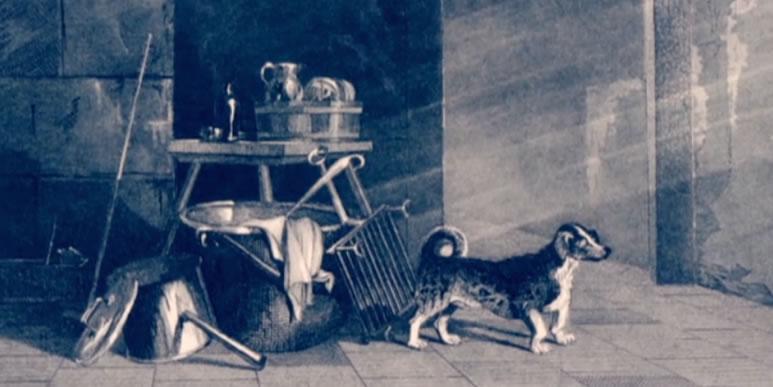 Спорим, о таком вы не знали: вертельные собаки