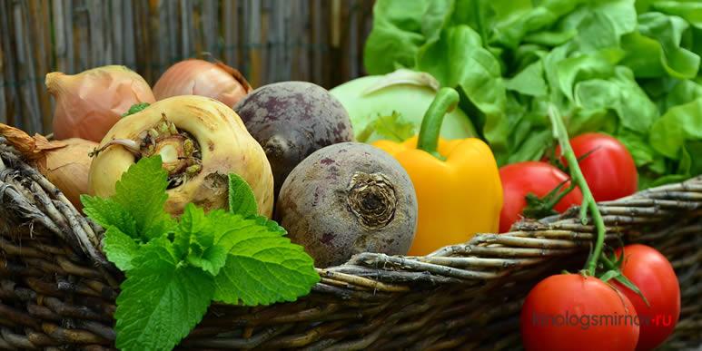 Какими овощами можно кормить собаку?